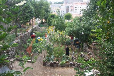 Cultivar autonomia, colher comunidade: Hortas comunitárias e o resgate de «baldios» do Porto