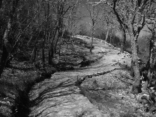 """O """"Caminho Privilegiado"""" unia as três povoações do Couto Mixto com a localidade portuguesa de Tourém, atravessando território de Espanha e Portugal (foto de Ramón Dominguéz Blanco)"""