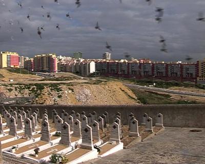 alto de são joão lisboa mapa Demolições de pombais no Alto de S. João, Lisboa   Jornal Mapa alto de são joão lisboa mapa