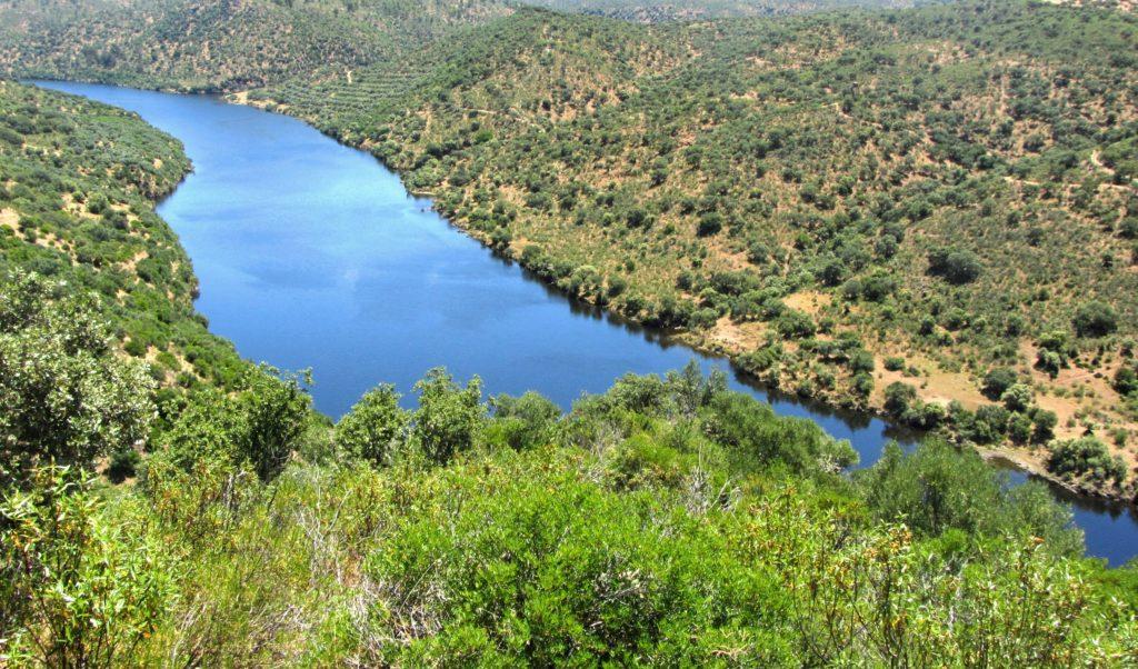 Tejo: o rio do nosso esquecimento