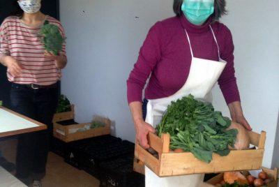 Caldeira Negra: a sudoeste, semeia-se consumo e produção local