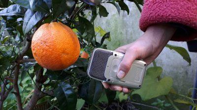 Rádio de proximidade