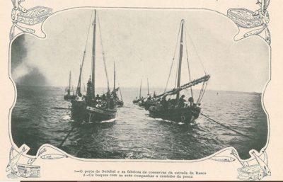 O cerco libertário dos pescadores em defesa do Sado