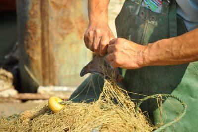 A Draga, os pescadores e o ambiente
