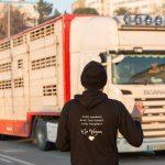 Setubal Animal Saves